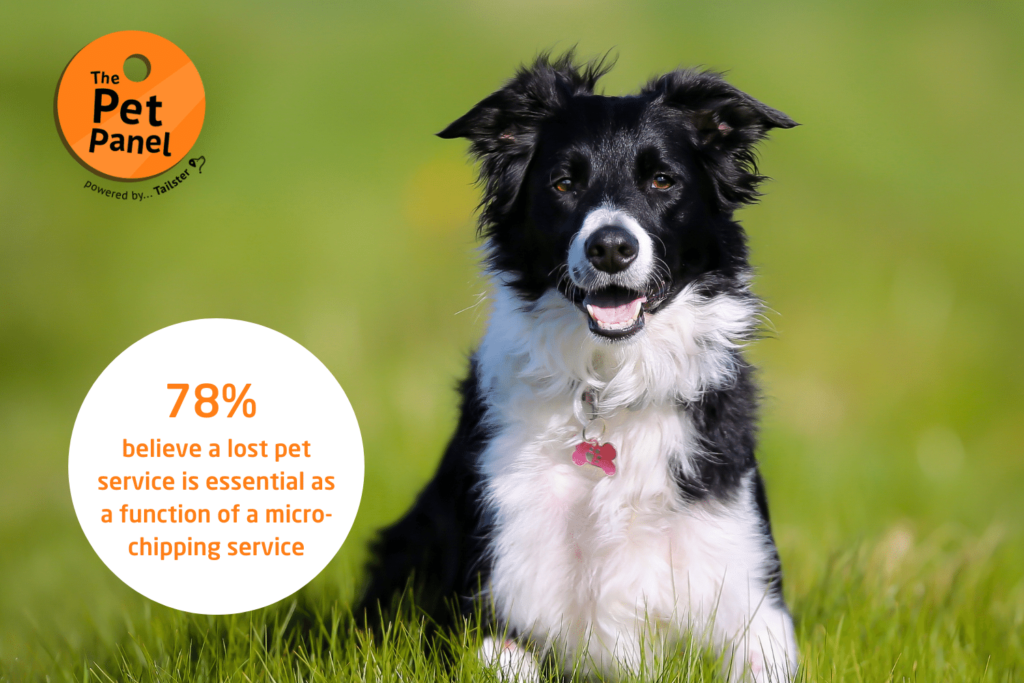 Lost pet service and microchipping
