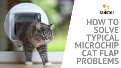 How To Solve Typical Microchip Cat Flap Problems