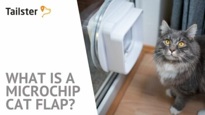 What is a Microchip Cat Flap?