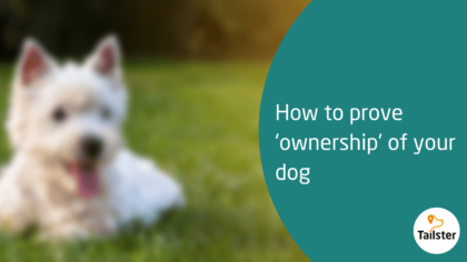 microchip prove ownership of dog